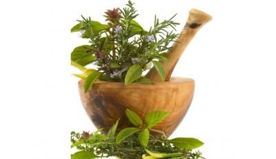 Растения адаптогены - от истори...