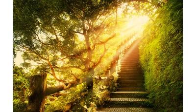 Солнечный свет – польза или вре...